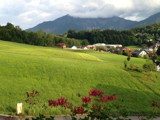 Haus Strutzenberger: View