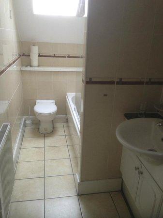 Castle View Apartments: bathroom