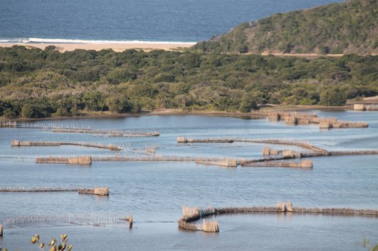 Amangwane - Kosi Bay : estuary, fish traps and Indian Ocean