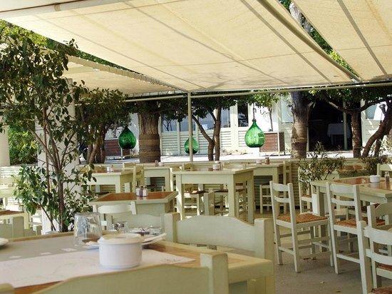 Scuna Restaurant: Χώρος