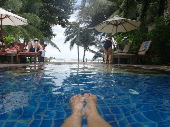 Muang Samui Spa Resort : pool