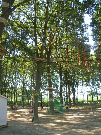 Parco Avventura Luzzara