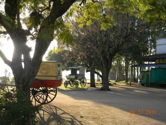 Granja Hotel Suizo : Carros viejos en el Parque