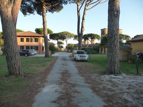 La Fattoria di Tirrenia Country Resort: Ingresso Proprieta'