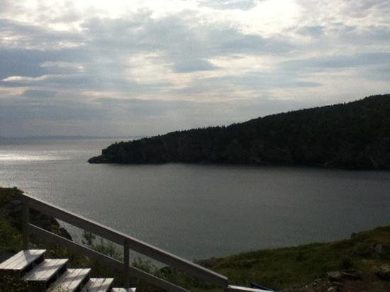 At William's Rest: view into conception bay