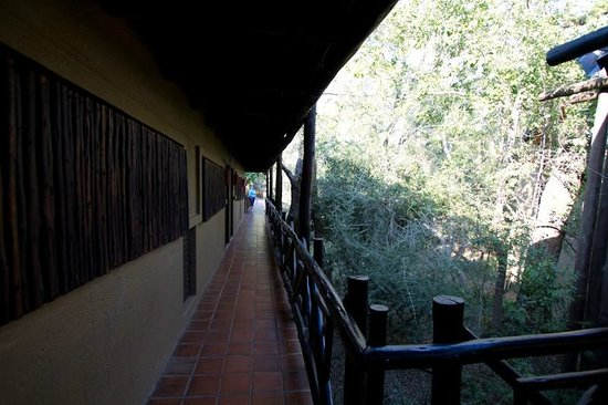 Protea Hotel by Marriott Kruger Gate: coursive desservant notre chambre
