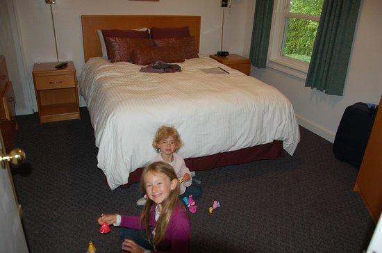Somass Motel & RV: la chambre