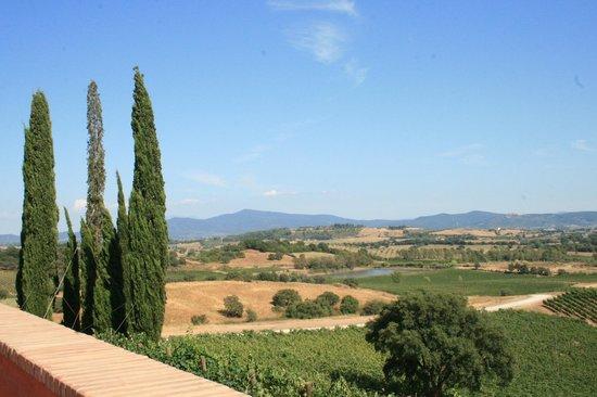 Cantina Rocca di Frassinello: Panorama dalla terrazza