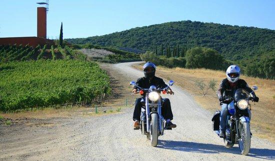 Cantina Rocca di Frassinello: Il maniero del XXI secolo