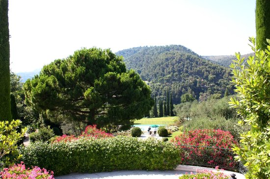 Chateau Saint-Martin & Spa: hotel grounds