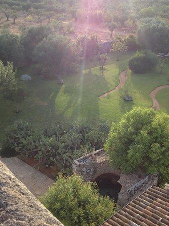 Masseria Don Cirillo: una parte di giardino