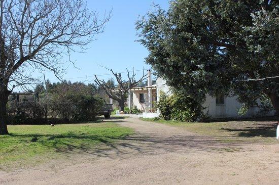 Atlantida, Uruguay: House