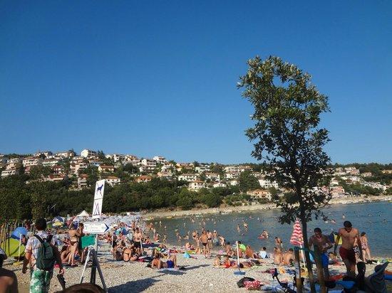 Camping Oliva: The beach