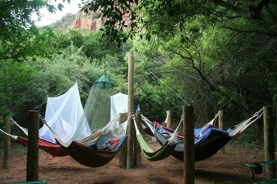 Mashovhela Bush Lodge: Hammock Camp