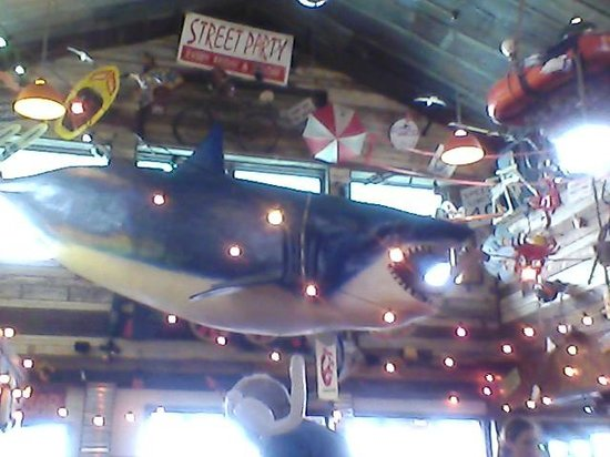 Joe's Crab Shack: Hanging shark/umbrellas