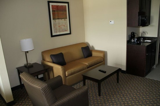 Holiday Inn Express Jackson/Pearl International Airport: Sitting area with fold out sofa