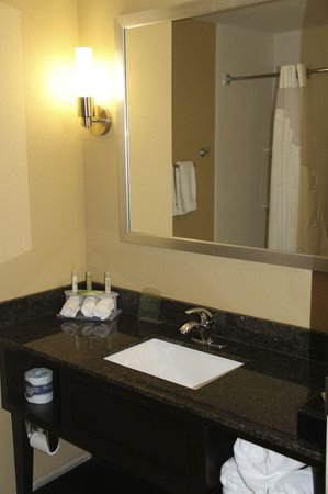 Holiday Inn Express Jackson/Pearl International Airport : Bathroom