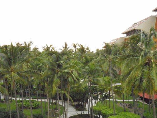 Club Regina Puerto Vallarta: Vista desde la habitación