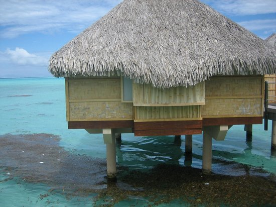 Le Taha'a Island Resort & Spa: lagon sale