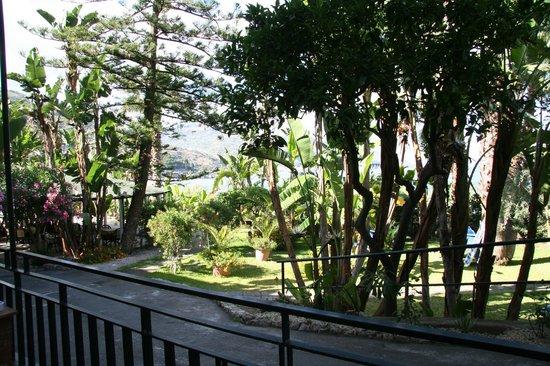 Hotel Baia delle Sirene: Garden
