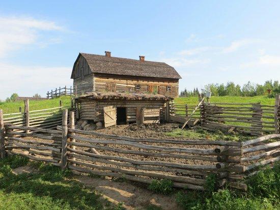 Ukrainian Cultural Heritage Village: barn and pig pen