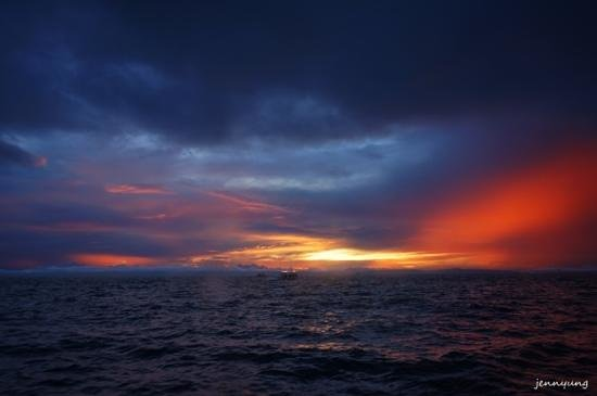 Thresher Shark Divers: Sunrise on the way to Monad Shoal for thresher sharks.