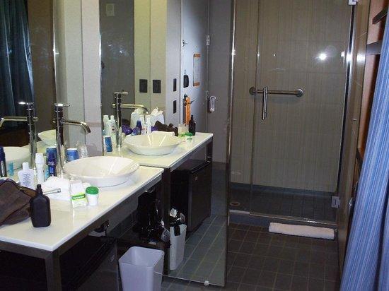 Aloft Bolingbrook: Banheiro