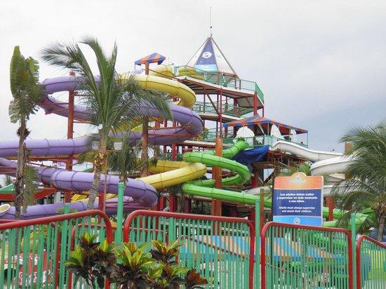 Aquaventuras Park: Toboganes