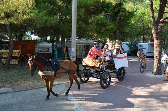 Siesta Camping Villaggio Hotel: La biga dell'antica Roma