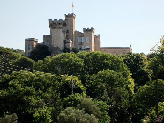 Chateau de La Barben : View of the castle from the road