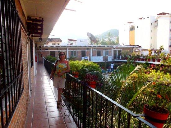 Hotel Posada de Roger : vista del jardin desde la habitacion