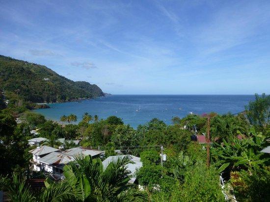 Carpe Diem Villa: View from balcony out to Castara bay.