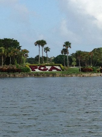 PGA National Resort & Spa: Grounds View