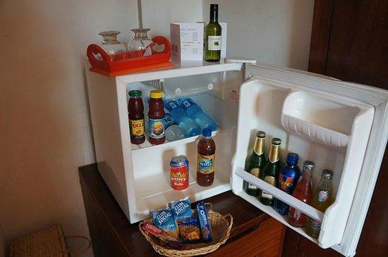 Hotel Villa Nancy : Minibar on the room