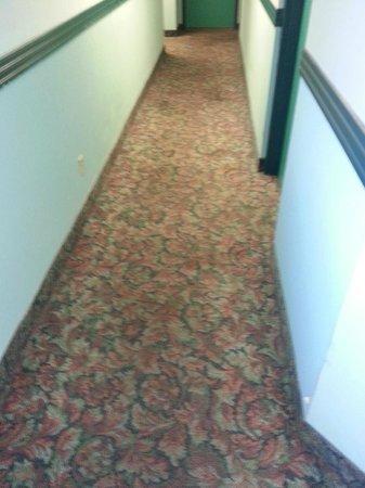 Super 8 Toronto East ON: Couloir avec tapis sale, usé et défraîchi