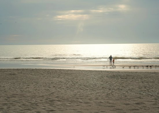 DoubleTree by Hilton Hotel Cocoa Beach Oceanfront: Just a beautiful peaceful beack
