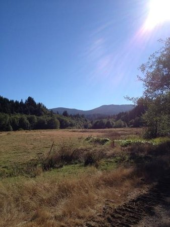 Powder Creek Ranch Bed & Breakfast: Views while taking a stroll through the ranch property