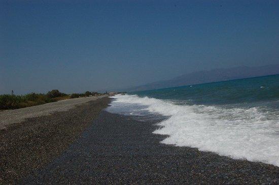 Sunprime Platanias Beach: udsigt fra stranden