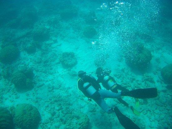Ocean Spirit Dive Center : Try Dive August 2013