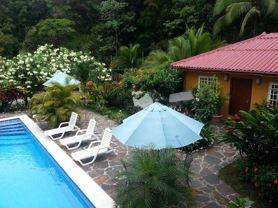 Coconut Lodge: gorgeous surroundings!
