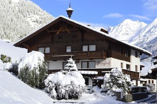 Gasteheim Berghof: Winter Ansicht