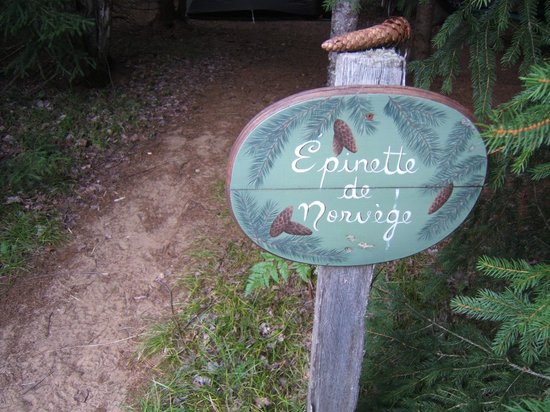 Le g te picture of les jardins de l 39 achillee for Camping le jardin de tivoli