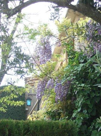 Hotel Font de Lauro: des fleurs et des plantes autours de l'hôtel