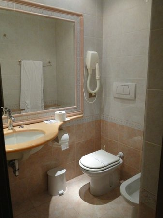 Pace Helvezia Hotel: Baño cómodo con secador de pelo