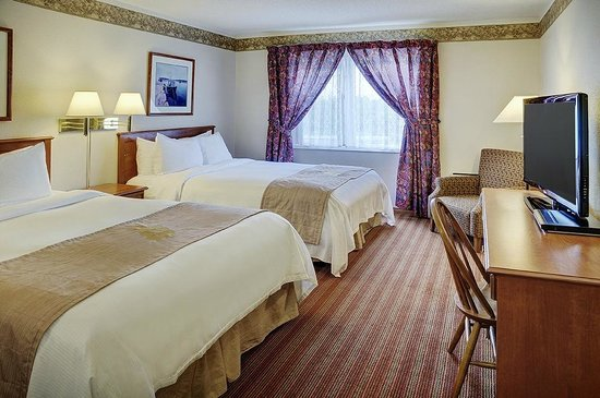 Coastal Inn Halifax : Double Queen Guestroom