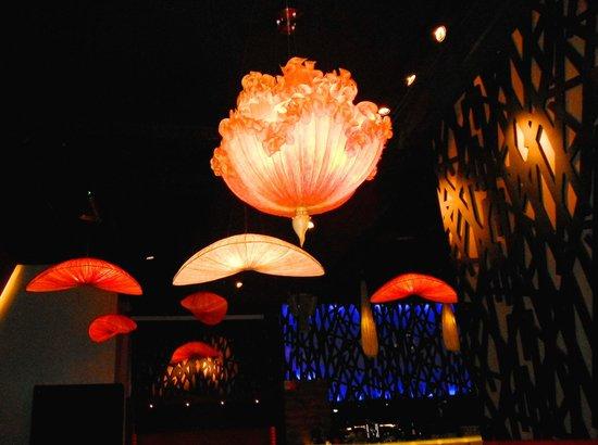 2013Aug01 DOMU Sushi Bar Dreamy Underwater Marine Life Lighting