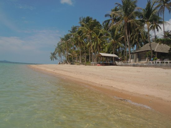 Mimosa Resort & Spa: The beach at the right