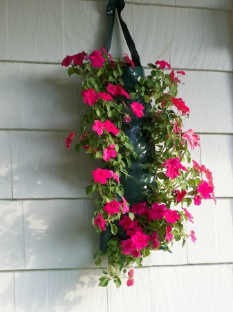 Country Acres Motel: Hanging Flower Baskets outside Motel Room