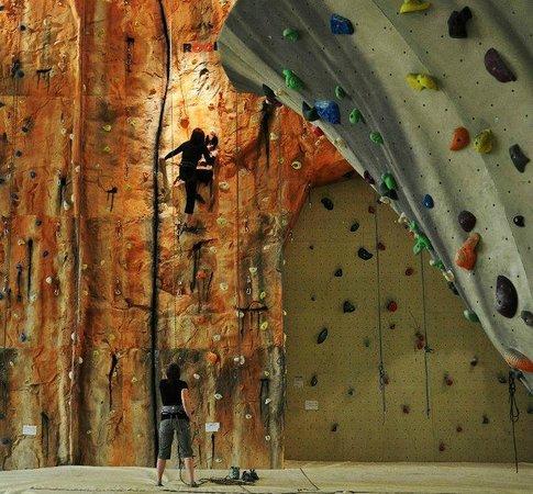 Altitude Gym : Le Rocktopia