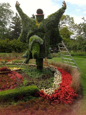 Garden Design of Moe Moe Gardening